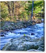 Asheville Stream Canvas Print
