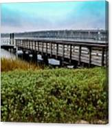Ashley River Sc Canvas Print