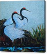 Asian Cranes 2 Canvas Print