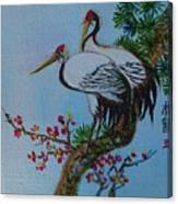 Asian Cranes 4 Canvas Print