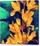 Asian Flower Canvas Print
