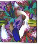 Asiatic Lilies Abstraction  Canvas Print