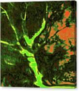Asleep At The Gate 11 Canvas Print