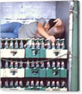 Asleep On The Job Canvas Print