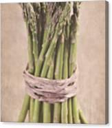 Asparagus Spears Canvas Print