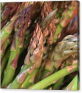 Asparagus Tips 2 Canvas Print