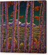 Aspen At Night Canvas Print