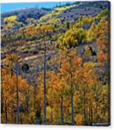 Aspen Cascades In The Sierra Canvas Print