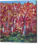 Aspen Fall Canvas Print