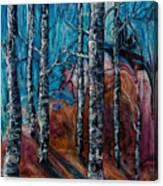 Aspen Grove - 2 Canvas Print