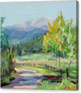 Aspen Lane Canvas Print