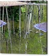 Aspen Reflections Canvas Print