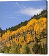 Aspen Ridge San Juan Mountains Canvas Print