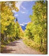 Aspen Road Canvas Print