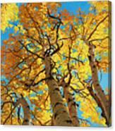 Aspen Sky High 2 Canvas Print