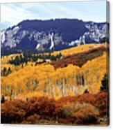 Aspen Vista Canvas Print