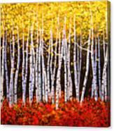 Aspens Aglow Canvas Print