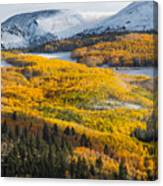 Aspens And Mountains In The Morning Light Canvas Print