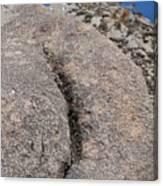 Ass Rock New Mexico Canvas Print