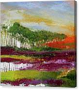 Assateague Sunset Canvas Print