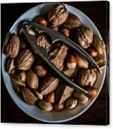 Assorted Nuts Canvas Print