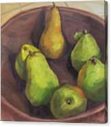Assorted Pears Canvas Print