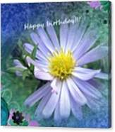 Aster ,  Greeting Card Canvas Print