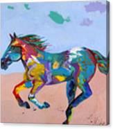 At Full Gallop Canvas Print