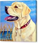 At The Beach - Labrador Retriever Canvas Print