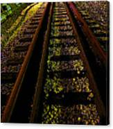 At The End Of A Railroad Track Canvas Print