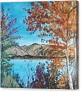Fall Aspens Canvas Print