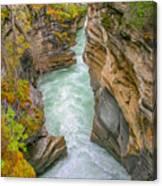 Athabasca River Canyon Canvas Print
