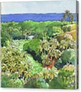 Atiu Lake View Canvas Print