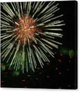 Atom Burst Canvas Print