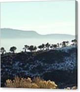 Atop Peavine Mountain Canvas Print