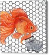 Attention Goldfish Shoppers Canvas Print