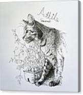 Attila Canvas Print