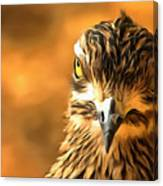 Attitude...with Feathers Canvas Print