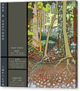 Audubon Forest Hydrology Poster Canvas Print