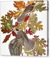 Audubon: Jay Canvas Print