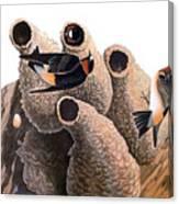 Audubon: Swallow Canvas Print