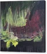Aurora Bolialis Canvas Print