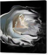 Aurora Rosealis Canvas Print