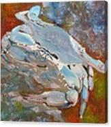 Austin Blue Crab Canvas Print