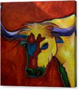 Austin Longhorn Canvas Print