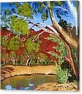 Australian Billabong Canvas Print