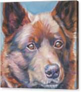 Australian Kelpie Canvas Print