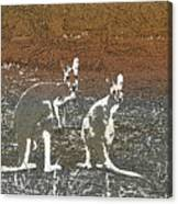 Australian Red Kangaroos Canvas Print