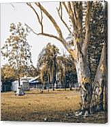 Australian Rural Countryside Landscape Canvas Print