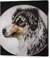 Australian Shepherd Della Mae Canvas Print